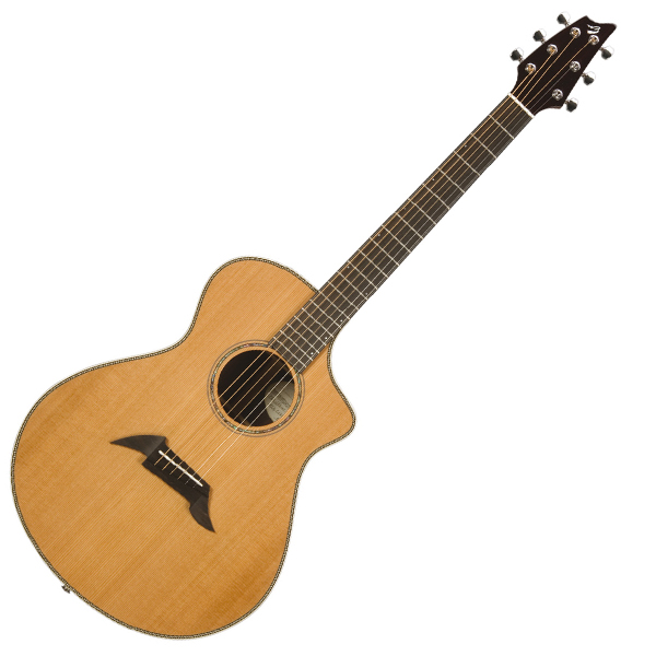 Breedlove C25 CR